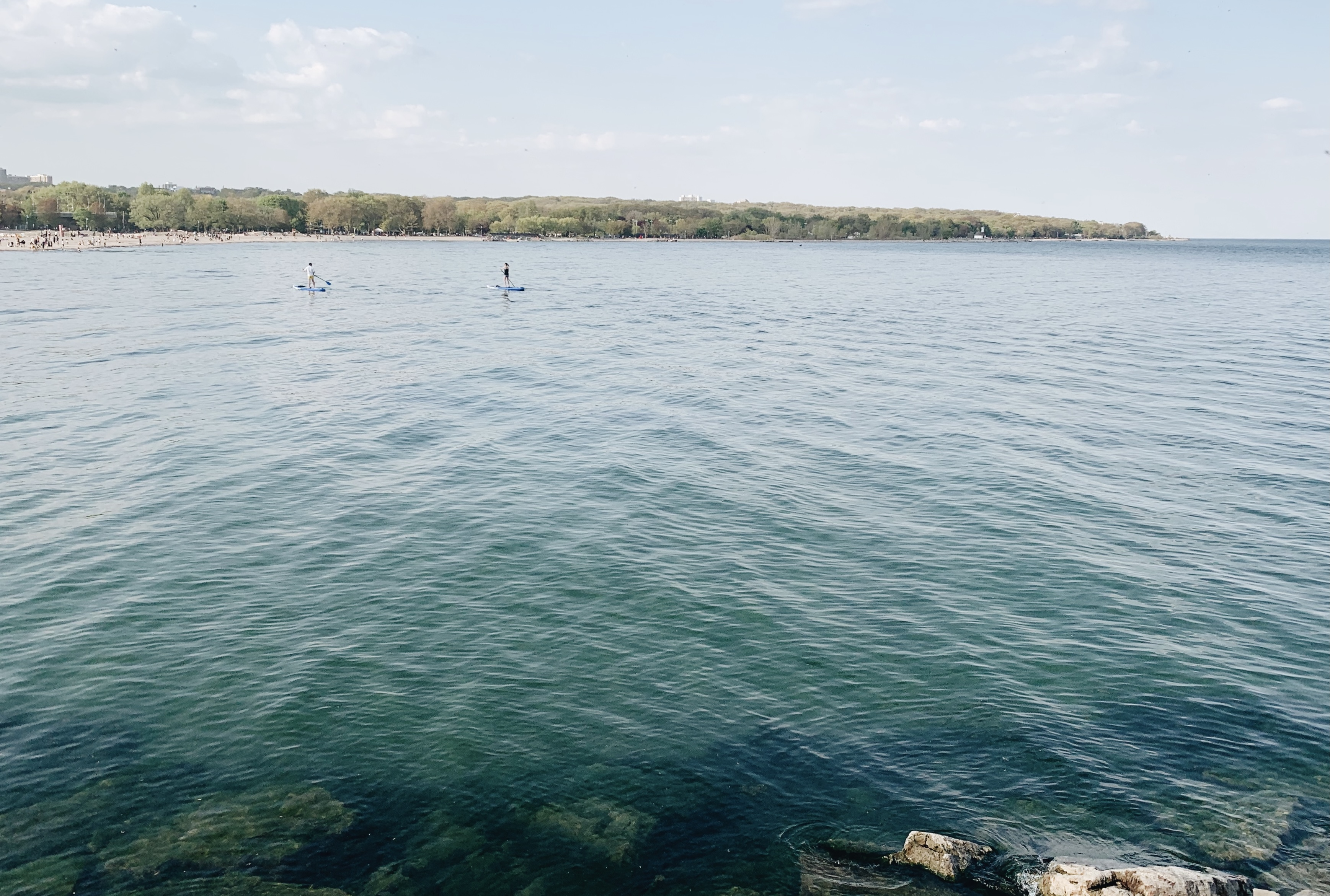 Foreground of blue water with a canopy of trees in the background. Two paddleboarders are on the lake.